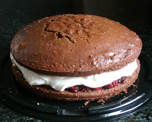 chocolate_cake_with_berries_and_cream_01_10x8